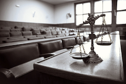 The Federal Sentencing Guidelines
